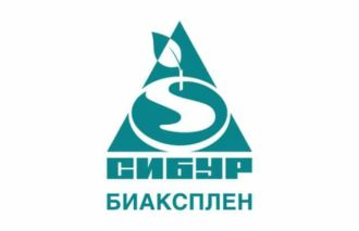 Dock leveller repaired in Zheleznodorozhny